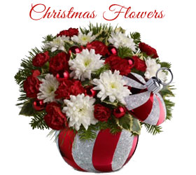 Send Christmas Flowers to Mumbai