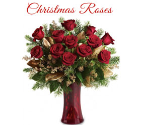 Online Christmas Flowers to Navi Mumbai