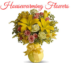 Send Housewarming Flowers to Mumbai