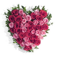 Send Flowers in Heart Shape to Mumbai