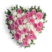 Send Flowers to Mumbai : Pink White Roses Heart