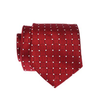 Christmas Gifts Delivery in Mumbai including VANHEUSEN TIE FOR MEN AS001