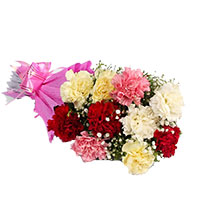 Mix Carnation Bouquet 12 Flowers delivery same day in Raj Bhawan Mumbai