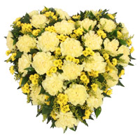 Best Christmas Flowers to Mumbai including Yellow Carnation Heart 24 Flowers to Mumbai