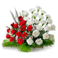 Christmas Flowers in Mumbai together with Red and White Carnation Basket 24 Flowers in Mumbai