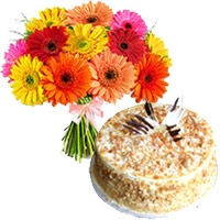 Mix Gerbera and Butter Scotch Cakes to Mumbai