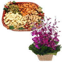 Deliver 10 Purple Orchids Basket 1/2 Kg Assorted Dry Fruits to Mumbai