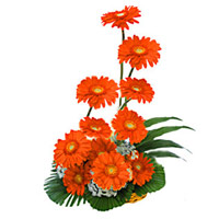 Flower Delivery in Mumbai : Red Gerbera Bouquet