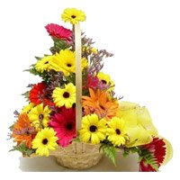 Send Flowers to Mumbai : Mixed Gerbera Arrangement