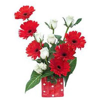Send Flowers to Mumbai : Red Gerbera White Roses