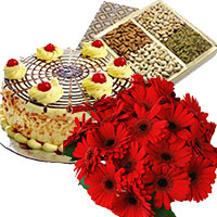 Deliver Gifts to Mumbai. Send 500 gm Butter Scotch Cake 12 Mix Gerbera Bouquet to Mumbai