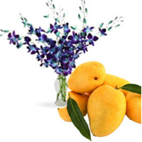 Send Friendship Day special Gifts Blue Orchid Vase 6 Flowers Stem with 12 pcs Fresh Mango on Friendship Day