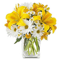 Midnight New Year Flower delivery in Mumbai for 3 Yellow Lily 9 White Gerbera in Vase