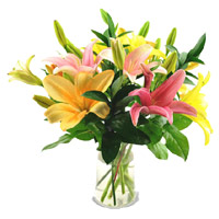Send Christmas Flowers to Amravati together with Mix Lily Vase 5 Flower in Mumbai