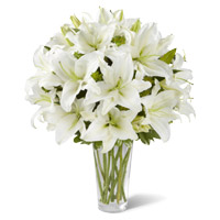 Online Flower Delivery in Mumbai :  White Lily