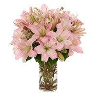 Online Lily Flowers to Mumbai