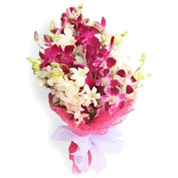 Orchids Flower Delivery in Mumbai