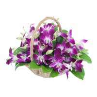 Place Online Order for Purple Orchids Basket 15 Flower Stems Delivery in Colaba Mumbai