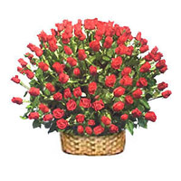 Place Order for Valentine's Day Roses in Mumbai
