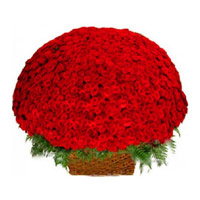 Online Shopping for Flowers to Mumbai