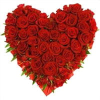 Send Heart Shaped Flowers in Mumbai : Valentine's Day Gifts in Mumbai