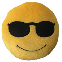 Same Day Gifts to Mumbai - Smiley Online Cushions