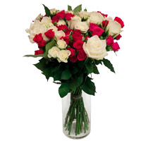 Christmas Flowers in Mumbai Same Day including White Pink Roses Vase 24 Flowers to Pune