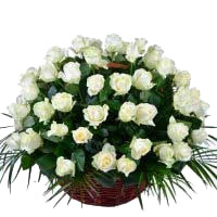 Online Flowers to Mumbai : White Roses