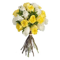 Send Online Yellow White Roses Bouquet 24 flowers to Mumbai. Send Friendship Day Flowers