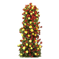 Send Friendship Day Flowers Online to Mumbai. Aggrangement is made of Yellow Red Roses Tall Arrangement 100 flowers
