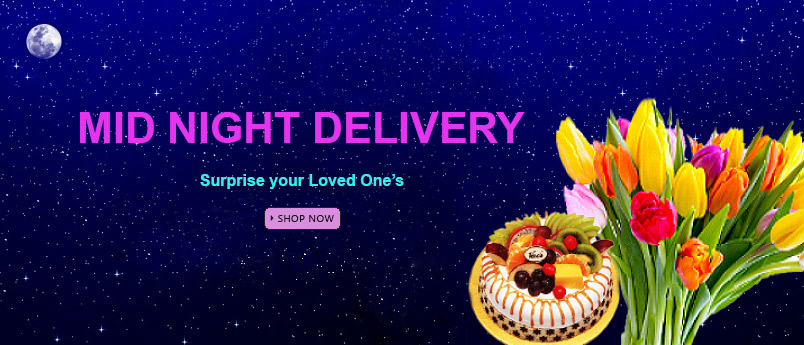 Midnight Delivery in Panvel