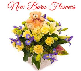 Send New Born Flowers to Mumbai